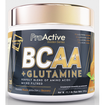 BCAA con Glutamina 315 gr